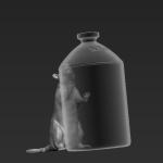 Rat 12 - Standing - SRD 2