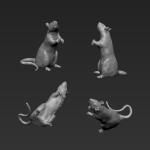Rat 9 - Standing - High 2